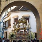 procesion transito 2014 (P. León) -2